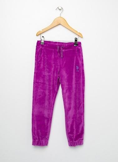 U.S. Polo Assn. U.S. Polo Assn. Menekşe  Pantolon Mor